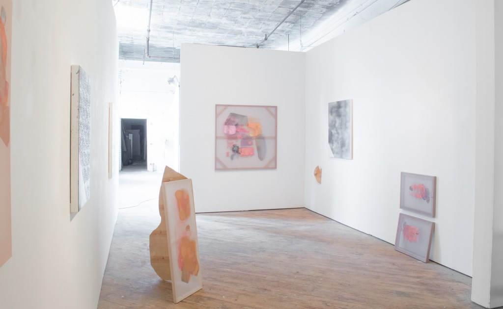 Amiable Strangers installation view - Paintings by Elise Thompson and Nathan Weikert